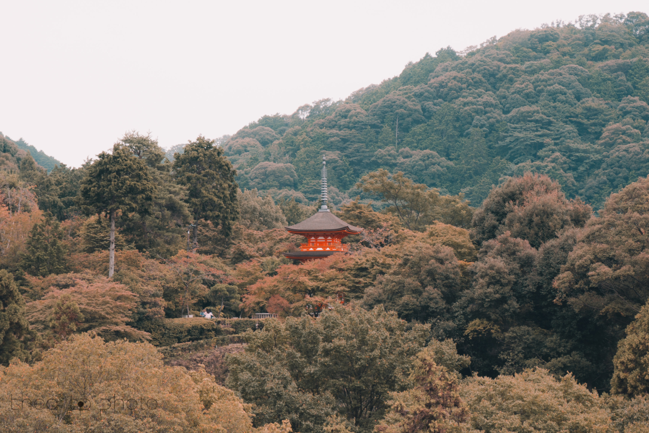 An afternoon stroll at Kiyomizu-Dera. This Buddhist temple offers some beautiful views and a lovely a walk through a forest.